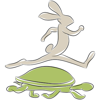 microSD Card Speed, The Tortoise and The Hare.