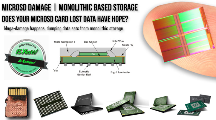 MicroSD Cards Monolithic Storage Recovery
